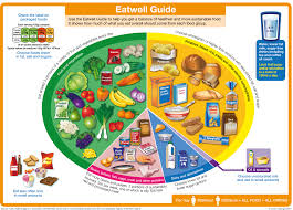 how reliable is the eatwell guide the official chart of what