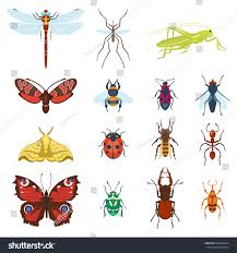 colorful top view insects icons isolated stock vector 593820374