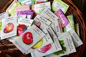cheap seed packets buy seeds bob vila s blogs