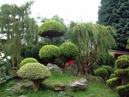 japanese garden design for small spaces japanese garden designs