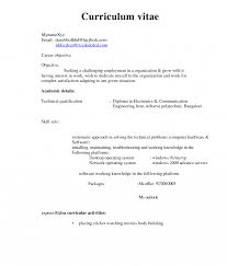 sle resume format pdf resume format for doctor pdf bams student india