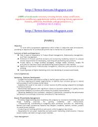 Resume Format Mba Finance Cover Letter Engineering Professor Template