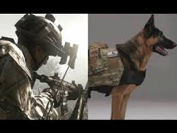 Call Duty Ghosts Halloween Costumes Call Duty Ghosts Meet Dog Plays Riley