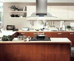 island exhaust hoods kitchen exhaust hoods for home kitchens thelodge club