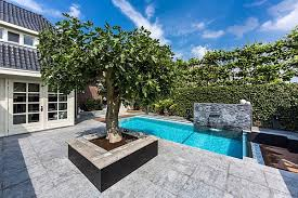Luxury Backyard Designs Decorate A Luxury Backyard Drenched In Flowing Opulence