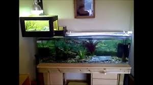 Texas Map Turtle 4 Foot Turtle Tank Home Made Above Tank Basking Area Pets