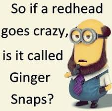 Ginger Snap Meme - minion ginger snap meme ginger best of the funny meme