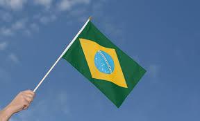 Brazil Flag Image Fahne Flagge Flag Brasilien Brazil Holzstab Wm Inmove Sports