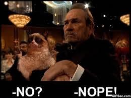 Tommy Lee Jones Meme - lol grumpy cat and tommy lee jones viral viral videos