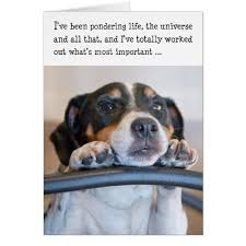 humorous birthday cards humorous birthday card dog pondering zazzle