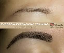 eyebrow extensions training u0026 lash training by nadia afanaseva
