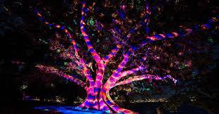Blue Light Live Vivid Sydney 2016 Q U0026a Anthony Bastic Director Of Light Live Design