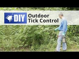 Ticks In Backyard How To Control Ticks In Your Yard Outdoor Tick Control Youtube