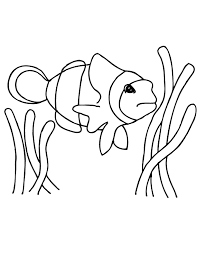 free printable fish coloring pages printable coloring pages