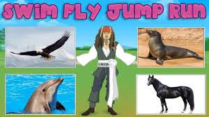 ways animals move quiz for kids youtube