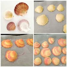 seashell shaped cookies best 25 clam shell cookies ideas on oyster cookies