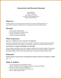 Federal Job Resume Sample by Government Resume Examples