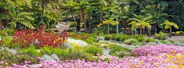 Garden Botanical Australian Botanic Garden Tours And Walks