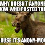 Moose Meme - bad pun moose meme generator imgflip