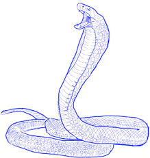 how to draw a king cobra snake draw step by step