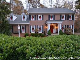 Christmas Decorations For Outdoor Windows by How To Hang Wreaths On Outside Exterior Windows