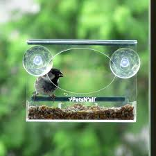 clear plastic window bird feeder fascinating clear bird feeder 116 clear plastic window bird feeder