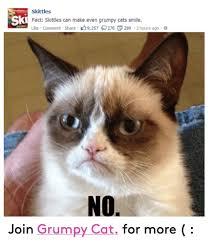 Cat Facts Meme - skittles ski fact skittles can make even grumpy cats smile like