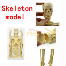 Skeleton Halloween Decoration Uk by Scary Animated Skeleton Lady Baby Rocking Chair Halloween Party