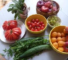 Ser Vegetariano é Ser Saudável?