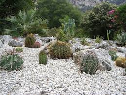 Backyard Gravel Ideas - what is a gravel garden ideas for landscape garden trends