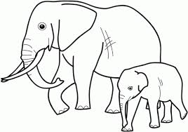 coloring page magnificent color pages animals baby online