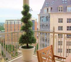 outdoor artificial boxwood spiral topiary silk boxwood topiary