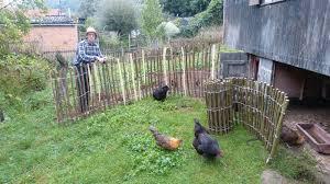naturzaun für 1 u20ac der meter gartenzaun hühnerzaum selber bauen