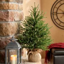 xmas tree on table stylish real tabletop christmas tree unbelievable beautiful