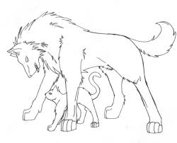 wolf and cat sketch by lord amitai on deviantart