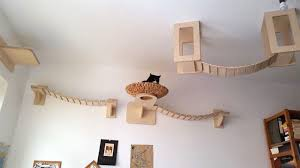 cat wall furniture cat loves lounging in this basket but you won t believe where