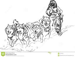 sled dog coloring pages stock photo alaskan sled dogs print