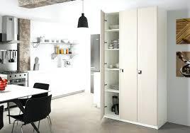 placard de cuisine but design d intérieur placard de cuisine luxury mol mural but