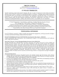 It Director Resume Samples Resume Objective For Project Manager Manager Resume Objective