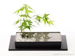 japanese zen garden interior products alexcious