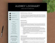 best resume format guide for 2017 resume etiquette pinterest
