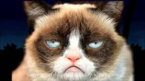 21 Of The Best Grumpy - happy birthday song for mom dad kid grumpy cat animals free ecard