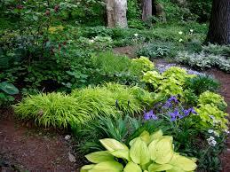 Shade Garden Ideas Woodland Shade Garden Gardening Photo Contest