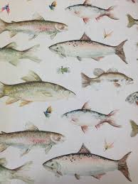 Bathroom Art Ideas For Walls by Fish Wallpaper By Voyage U0027country U0027 Wall Art Cotton Tree