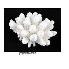 aquarium marine white coral 10cm ornament 440 white black