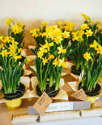 Flower Pot Wedding Favors - 9 creative ways to use potted plants in your wedding weddings