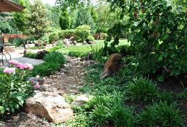Drought Tolerant Landscaping Ideas Drought Tolerant Plant Ideas For Your Homestead