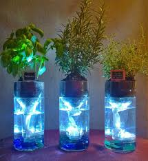 Self Watering Upcycled Self Watering Terrarium Kits Great For The Kitchen