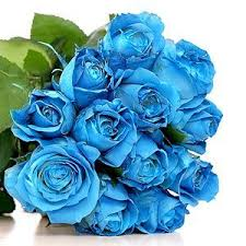 teal roses roses philippines free delivery metro manila