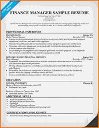Sample Resume Finance Manager by 8 Finance Resume Example Financial Statement Form
